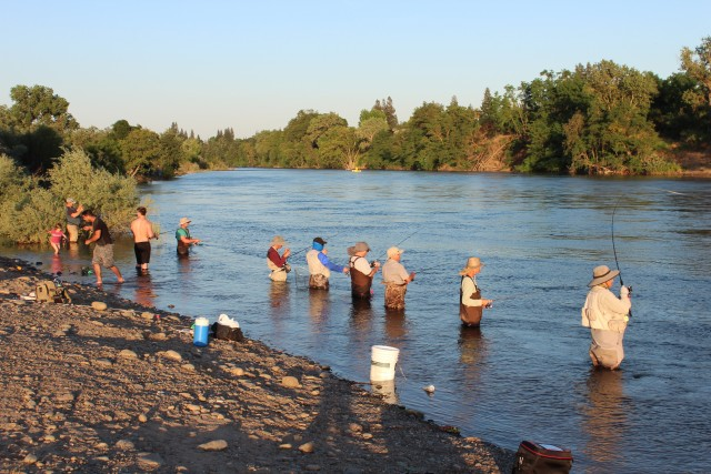 When you go shad fishing, you can expect to see a lot of anglers fishing also at the popular spots.