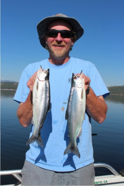 Captain James Netzel of Tight Lines Guide Services shows off two hard-fighting kokanee caught while trolling at Stampede.