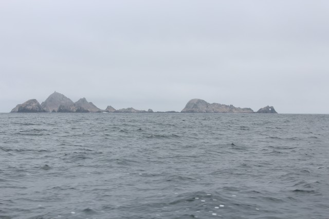 The Farallon Islands feature some of the best lingcod and rockfish action available off the West Coast.