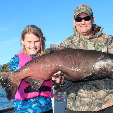 Feather River Steelhead and Fall Chinook Numbers Soar