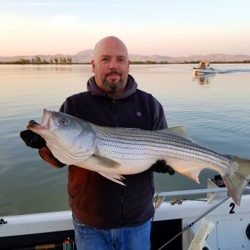 Stripers and Sturgeon and Salmon, Oh My!