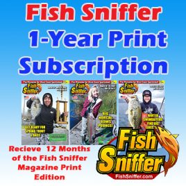 1-Year Print Subscription