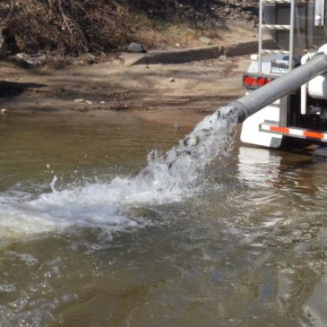 CDFW Is Planting 200,000 Steelhead In Thermalito Afterbay This Year
