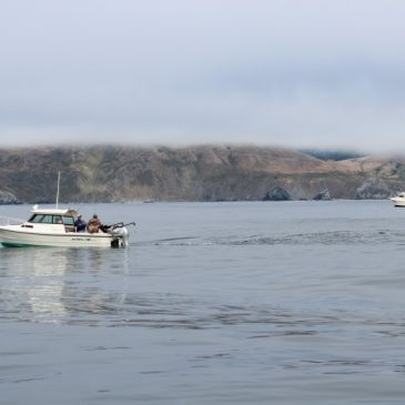 Salmon Fishing Will Open on April 7 Below Pigeon Point, Remain Closed Above