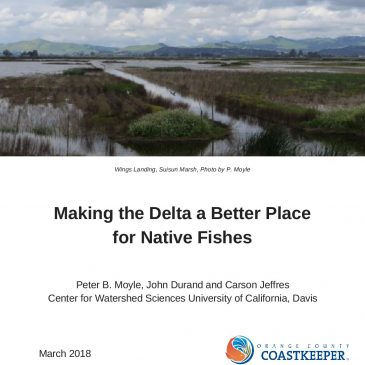 White Paper Commissioned by Delta Tunnels Proponents Claims CAWaterFix Would 'Benefit' Fish