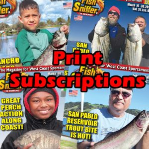 Print Subscriptions