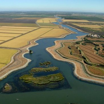 Department of Water Resources Director announces 'organizational adjustments' prompted by Delta Tunnels project