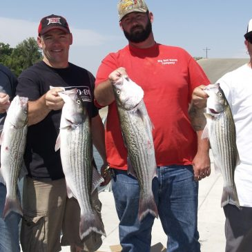 Bait Fishing Gear For Delta Stripers