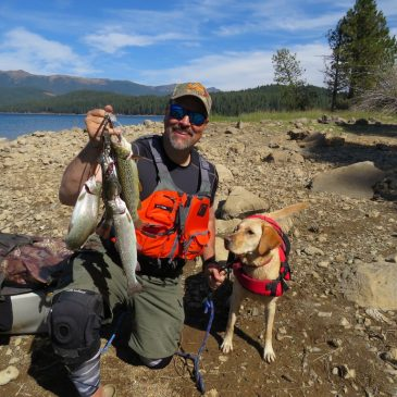 Almanor Adventure Produces Browns & Rainbows!