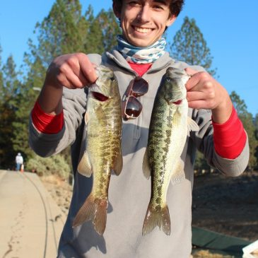Fall Offers Solitude for Trout, Bass & Crappie Anglers at Rollins Lake