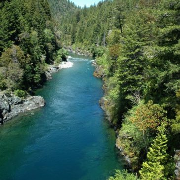 Fishermen Petition Water Board to Stop Pesticide Pollution on Smith River