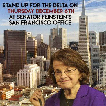 Stand Up for the Delta on Thursday, December 6, at Senator Feinstein's San Francisco Office