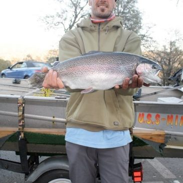 Top Late Winter & Spring Trout Destinations for Golden State Anglers
