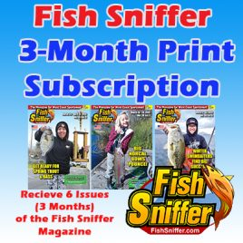 3 Month / 6 Issue PRINT Subscription