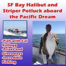 Live Bait Halibut and Striper Bay Fishing Trip 6-27