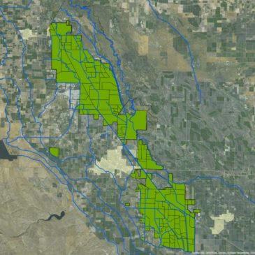 Fishing Groups Win Major Court Victory Over San Joaquin Valley Agricultural Polluters
