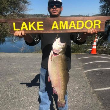 Amador Anglers Battle Monster Trout to 15.75 Pounds