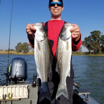 Advanced Trolling Techniques for Spring Stripers