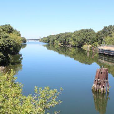 Port of West Sacramento/Ship Channel: Popular Fishing Destination, Delta Smelt Sanctuary